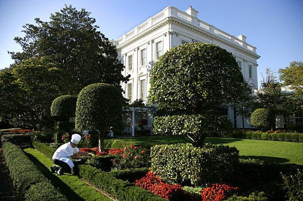 Jackie Kennedy Garden - White House Museum